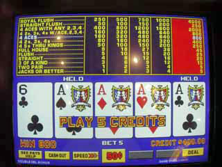 Aces w/o kicker on a 50 cent VP, Sharon's
