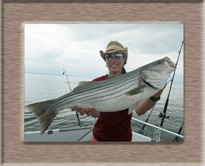 Chesapeake bay charter fishing with worm sportfishing charters for Choptank river fishing report